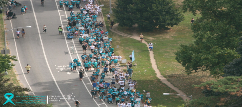Save The Date: 8th Annual Brooklyn ®T.E.A.L. Walk/Run